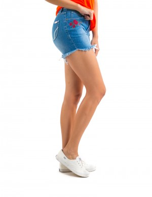 Freshgear Highwaist Embroidered Floral Shorts In Blue