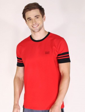 Rifle by Rodeo Drive Round Neck Missed Lycra Cut and Sew T-Shirt with Dense Print in Red